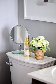 Bathroom Air Freshener Extraordinary 48 Brilliant Tips To Make Your House Smell Good TidyMom