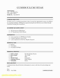 Resume Title Examples New Resume Headline Examples For Experience