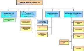 Большой Каталог Рефератов Курсовая работа Бухгалтерский учет  Структура предприятие на ООО Алиса
