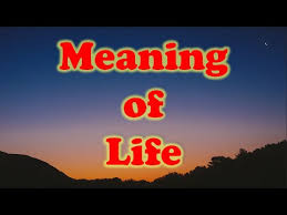 The Meaning Of Life Quotes YouTube New What Is The Meaning Of Life Quotes