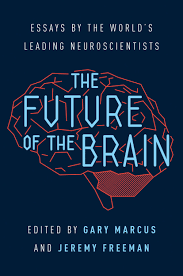 future essays the future of the brain essays by the world s  the future of the brain essays by the world s leading an unprecedented