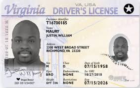 Shenandoah Valley Regional 2 License Real Airport Id -