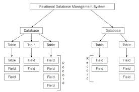 Case study in database   Order Custom Essay Online Programming Assignments Help Relational Database System Assignment