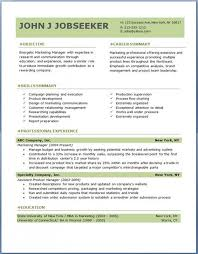 Professional Resume Formats Magnificent Professional Resume Format Examples Musiccityspiritsandcocktail