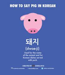 Korean Word For Earth How To Say Pig In Korean Learn Basic Korean Vocabulary