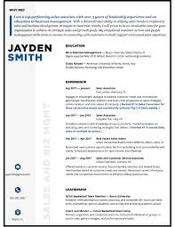 Resume Professional Services Professional Resume Writing Services Resume Design