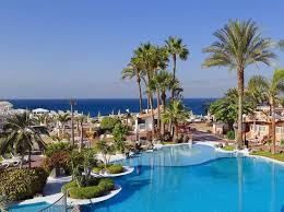 <b>Sol Sun Beach</b> - Costa Adeje, Tenerife | On the <b>Beach</b>