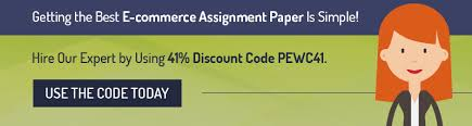 e commerce assignment sample professional essay writers e commerce assignment sample
