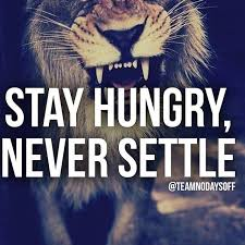 Never Settle Quotes Awesome 48 Settled Quotes By QuoteSurf