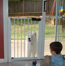 installing a dog door in a glass door tcworks