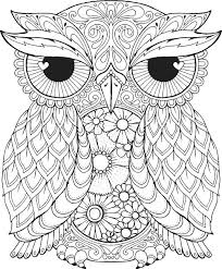 Owl Color Page Owl Coloring Pages Best Owl Coloring Pages Ideas On