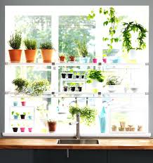 kitchen window shelf kitchen window plant shelf shelf above kitchen sink window