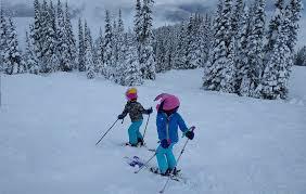 5 Best Downhill Alpine Ski Poles For Kids 2019 Best Snow