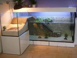 Image result for have a clean looking aquarium