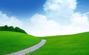 grass field background. Patch Way Grass Fields Sky Green Nature Photoshop Blue Field Background Pictures - 1280x800 A
