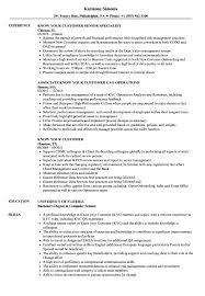 Kyc Analyst Sample Resume Know Your Customer Resume Samples Velvet Jobs 14
