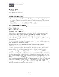 Summary In A Resume Example Stunning Executive Sample For And ...