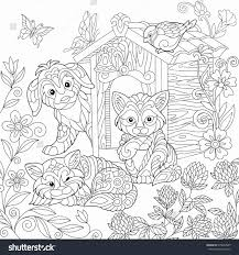 Fresh Cute Cat Coloring Pages Jvzoo