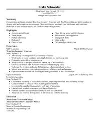 Traveling Inventory Associate Resume Sample