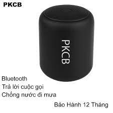 Loa bluetooth PKCB Model 120 Pin 600Mh
