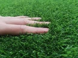 Artificial indoor grass Home Image Is Loading New25mmartificialgrasslawnturflandscapeindoor Ebay New 25mm Artificial Grass Lawn Turf Landscape Indoor Outdoor Support