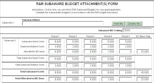 Budget Form Gorgeous Nih Budget Form Heartimpulsarco