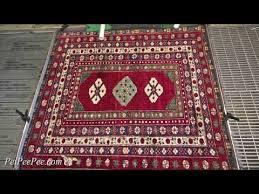 pet oriental rug cleaning