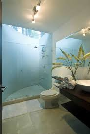Bathroom Skylight In Bathroom Condensationskylight Condensation