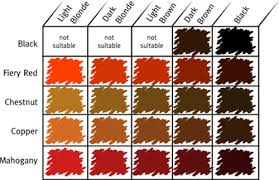 Light Red Hair Color Charts Posts Related Different Shades Red Hair Color Chart Sophie