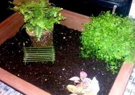 indoor fairy garden. Once You\u0027ve Put Your Soil Into Fairy Garden Container, Choose Some Of Indoor