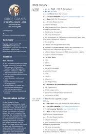 Sample Consultant Resume Consultant Resume Sample Pinterest