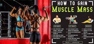 how to gain muscles m 3 rules to