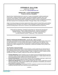 Sales And Marketing Resume Samples Interesting Vp Of Sales Resume Awesome Vp Of Sales Resume Examples Resume