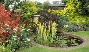 Garden Ponds Designs Mesmerizing Alan Titchmarsh's Tips On Creating Your Own Pond Expresscouk