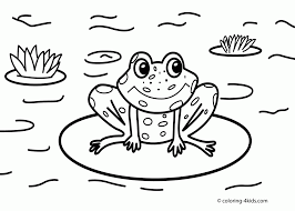 Small Picture Frog Coloring Pages For glumme