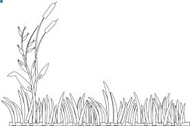Small Picture Grass Coloring Page Coloring Pages Ideas Reviews