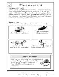 habitat and niche activity sheet answers winter worksheets activities 4 6 how animals adapt to habitat