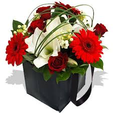 Image result for christmas flowers in a gift bag