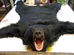 airondack back bear rug