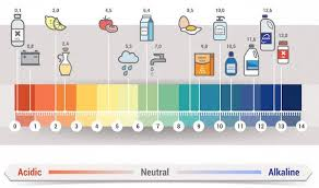 Ph Level Chart The Little Known Secret To Healthy Skin Balancing Your