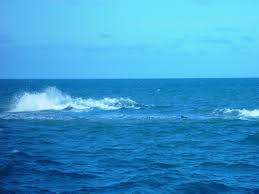 Free Picture Wave Open Sea