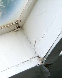 Image result for damaged skylight pictures