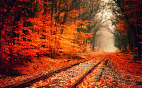 78+] Fall Wallpaper For Computer on ...