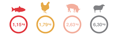 Cattle Feed Conversion Charts How Much Feed Is Needed To Grow A Farmed Fish