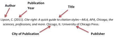 how to cite your sources is it important to cite your genealogy sources mexican genealogy