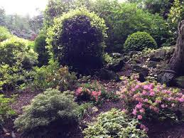 Small Picture Woodland Garden Design Inspiration Rhododendrons Azaleas and Acers