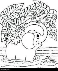 Freenimal Colouring Pages To Print Printable Farm Coloring For