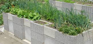 Garden Design Layout Backyard Vegetable Ideas A Greenhouse Is ...
