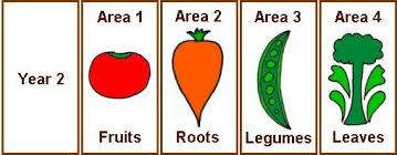 Vegetable Garden Crop Rotation Made Easy Todays Homeowner