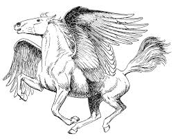 Realistic Pegasus Coloring Pages For Adults Coloringstar